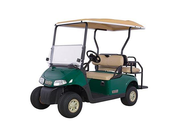Golf Buggy Main View